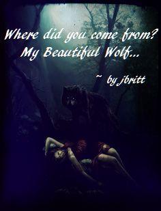 wolf202